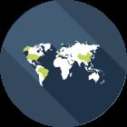 پشتیبانی بینالمللی، نرم افزار Go Plus