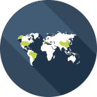 پشتیبانی بین الملل- نرمافزار Tiger Enterprise